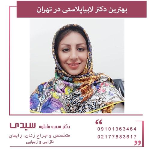 چگونه می توان بهترین دکتر لابیاپلاستی را در تهران انتخاب کرد؟